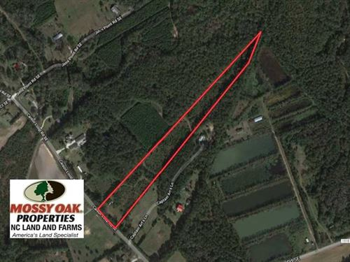 Reduced, 8 Acres of Residential : Winnabow : Brunswick County : North Carolina