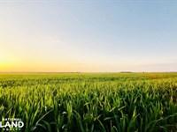 Chetopa Tillable Farm And Wetland : Chetopa : Cherokee County : Kansas