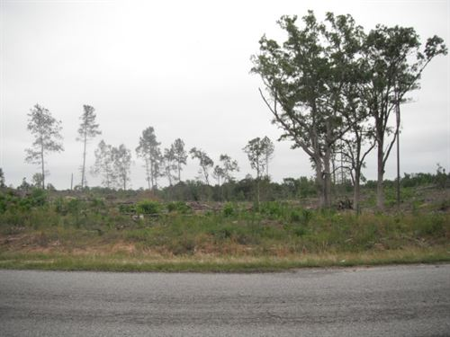 2 Acres - Fairfield County, Sc : Winnsboro : Fairfield County : South Carolina