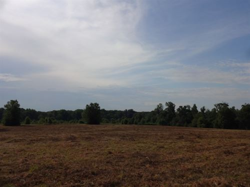 35.08 Acres &Ldquo : Pelzer : Greenville County : South Carolina