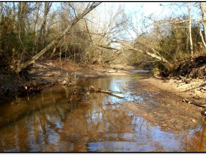 151 Acres In Montgomery County : Kilmichael : Montgomery County : Mississippi