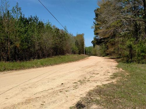 Little Mulberry Creek Tract : Maplesville : Chilton County : Alabama