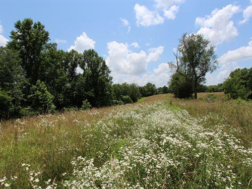 Great 98 Ac Farm In Santa Fe : Santa Fe : Maury County : Tennessee