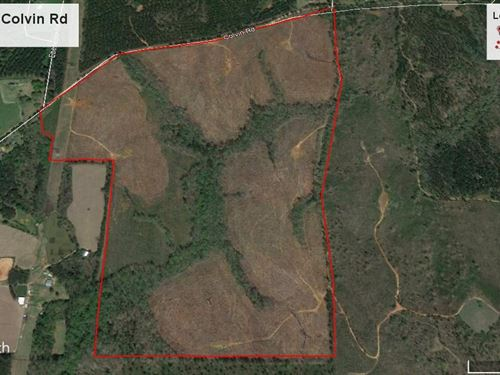 223.3 Acre Durden Tract : Forsyth : Monroe County : Georgia