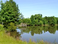 Elmore County Homesite And Fishing : Eclectic : Elmore County : Alabama