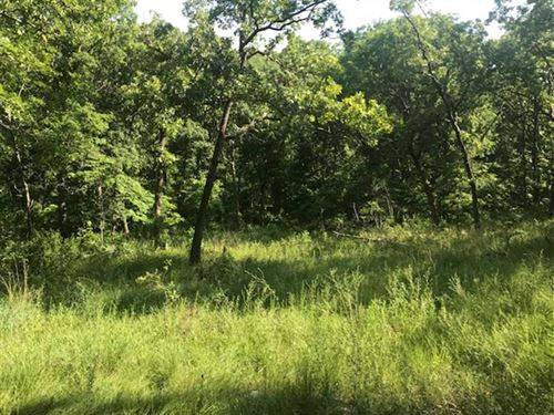 Great Little 11 Acre Recreational : Gravois Mills : Morgan County : Missouri