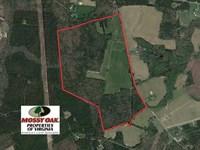 146 Acres of Farm And Hunting Land : Petersburg : Dinwiddie County : Virginia
