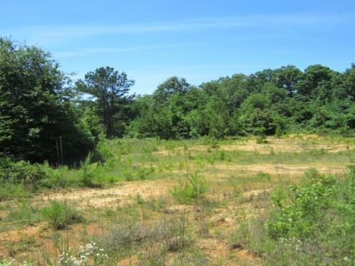 23 Acres In Lee County In Saltillo : Saltillo : Lee County : Mississippi