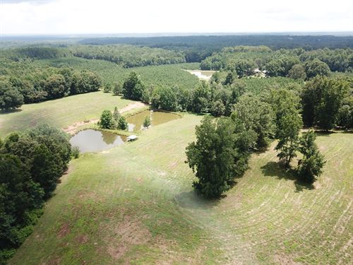 34+/- Acres Pastureland : Wadley : Clay County : Alabama