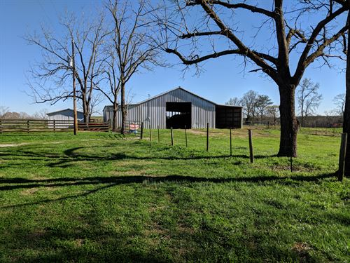 76+/- Acres Pastureland : Wadley : Clay County : Alabama