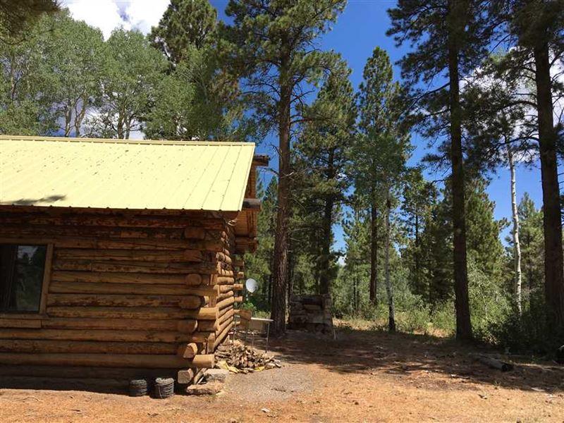 Log Cabin on Uncompahgre Plateau : Delta : Montrose County : Colorado