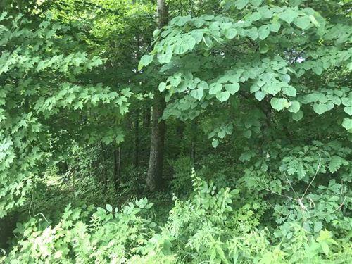 Tucker Lake Area Hunter's Paradise : Paoli : Orange County : Indiana