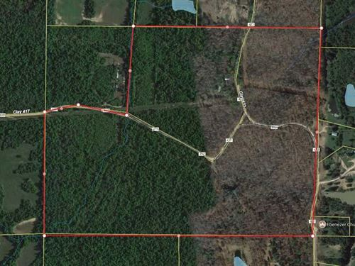 100 Acres, Wooded, Creek For : Rector : Clay County : Arkansas