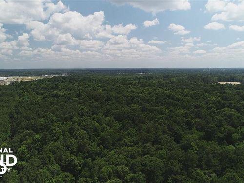 Commercial Development at Juban Cro : Denham Springs : Livingston Parish : Louisiana
