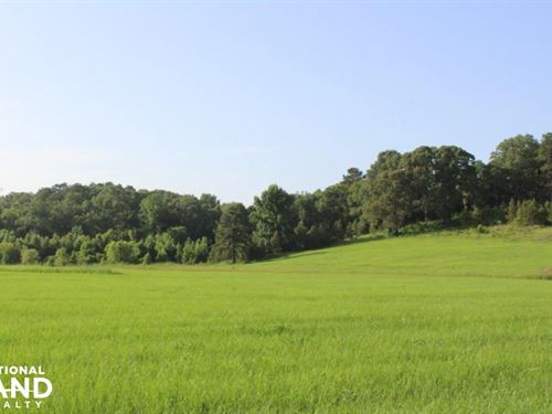 Selma Pasture, Hay And Hunting Land : Selma : Dallas County : Alabama