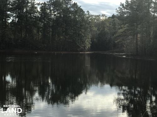 Lake & Barn Property West of Hattie : Sumrall : Lamar County : Mississippi