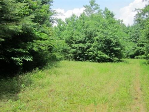 160.23 Acres In Union County In New : New Albany : Union County : Mississippi