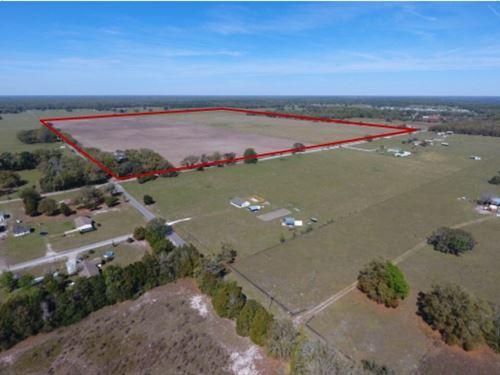 200 Acres - Lake Panasoffkee : Lake Panasoffkee : Sumter County : Florida