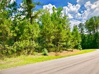 Northwoods Across From Lake Oconee : Greensboro : Greene County : Georgia