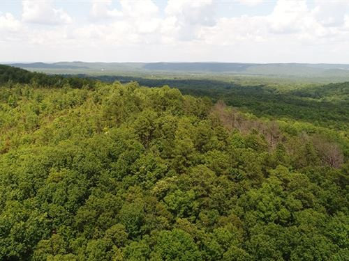 29.36 Ac On Cove Road : Woodbury : Meriwether County : Georgia