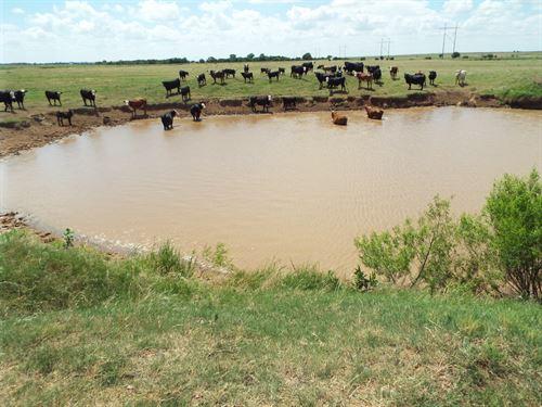 Cropland, Pond & Minerals : Garber : Oklahoma County : Oklahoma