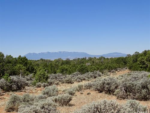 Summit Canyon 160 : Cortez : San Miguel County : Colorado