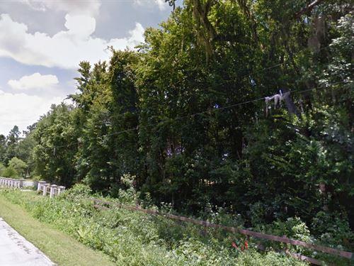 Putnam County, Fl $725,000 Neg : Palatka : Putnam County : Florida