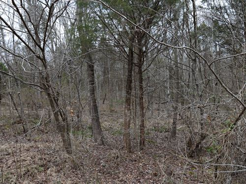 Buildable Lot 1 Hr From Nashville : Bon Aqua : Hickman County : Tennessee