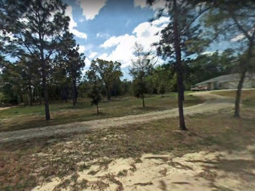 .48 Acres In Dunnellon, FL : Dunnellon : Citrus County : Florida