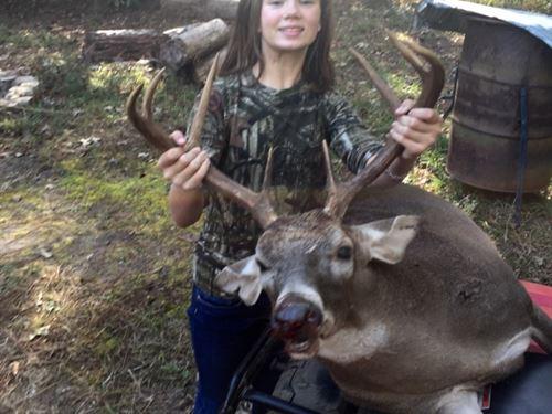 330 Ac, Timberland And Cabin, Pri : Hemphill : Sabine County : Texas