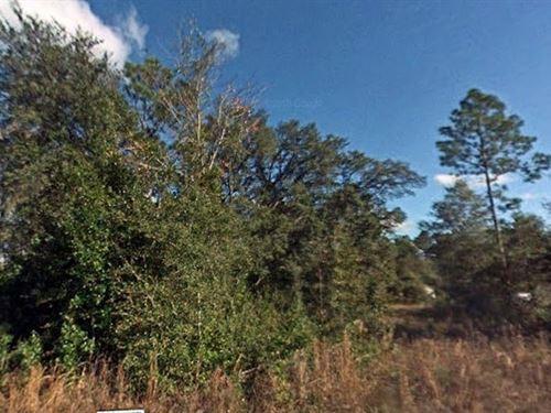 Marion County, Fl $36,000 : Dunnellon : Marion County : Florida