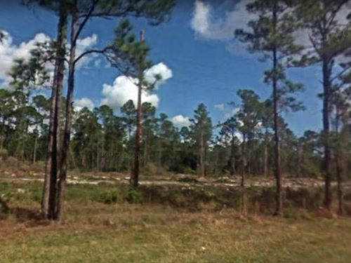Polk County, Fl $25,000 : Frostproof : Polk County : Florida