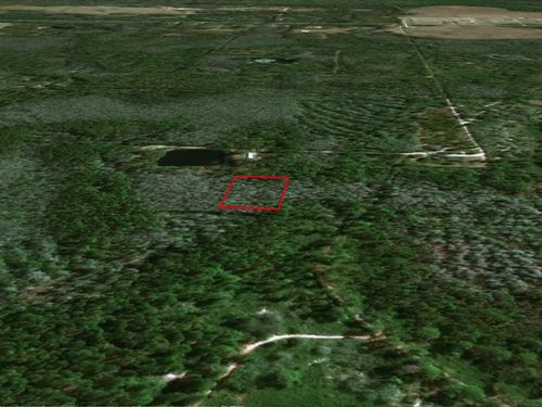 Groveland Ranch Investment Land : Polk City : Polk County : Florida