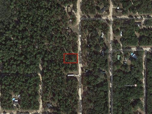 .34 Acres In Keystone Heights, FL : Keystone Heights : Clay County : Florida