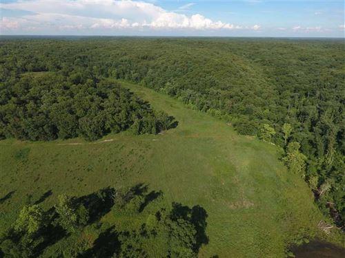 161 Acres of Great Recreation With : Camdenton : Camden County : Missouri