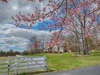 Shenandoah Valley Horse Farm : Elkton : Rockingham County : Virginia