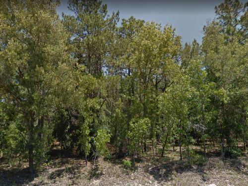 Marion County, Fl $32,000 : Ocala : Marion County : Florida
