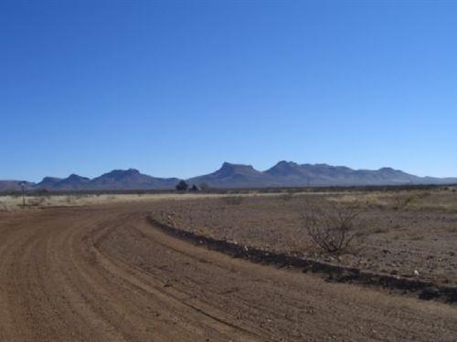 .44 Acres In Douglas, AZ : Douglas : Cochise County : Arizona