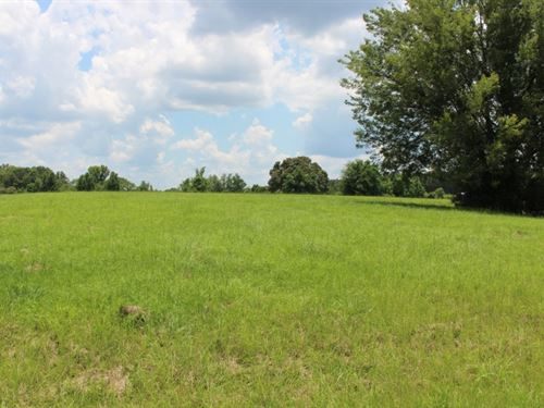 4.96 Acres In Hinds County : Byram : Hinds County : Mississippi