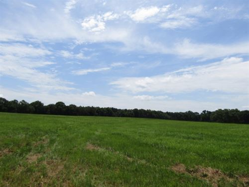 46 Acres In Scott County : Harperville : Scott County : Mississippi