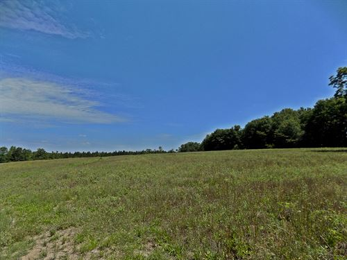 Chesterfield County Sc Hunting Land : Chesterfield : South Carolina