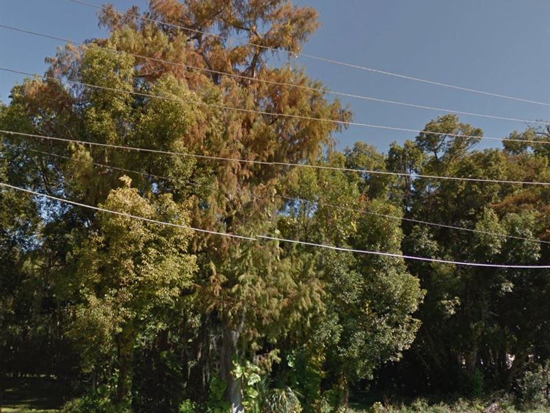 Osceola County, Fl $4,000,000 Neg : Kissimmee : Osceola County : Florida