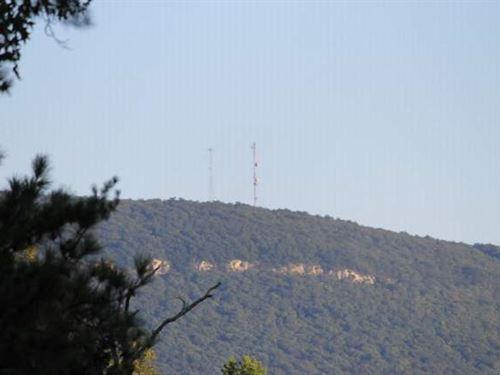Kentuck Mountain Tract : Munford : Talladega County : Alabama