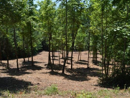 1.12 Acres On The Chattooga Riv : Westminster : Oconee County : South Carolina