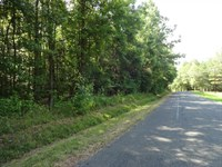 64.85 Acres, Wooded Acreage : Anderson : Anderson County : South Carolina