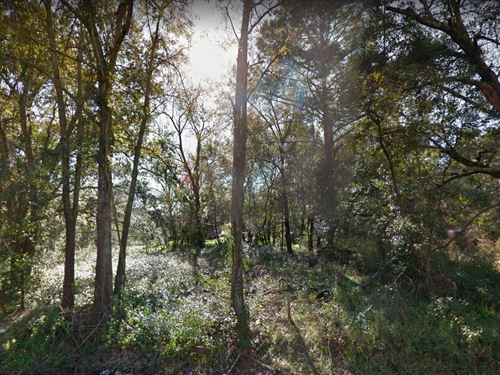 .14 Acres In Jacksonville, FL : Jacksonville : Duval County : Florida