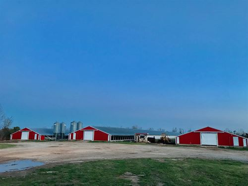 Poultry Farm With 4 Broiler Houses : Omaha : Boone County : Arkansas