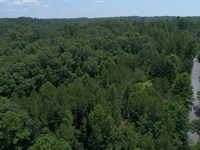 Wooded Acreage With Creek : Walhalla : Oconee County : South Carolina