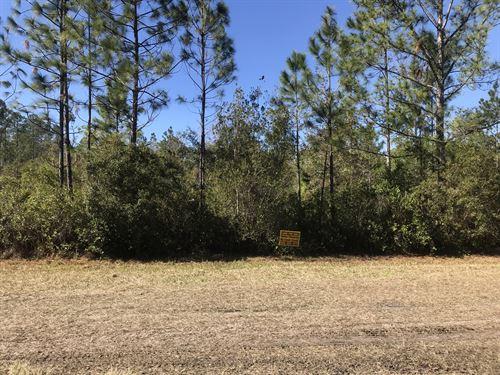 Daytona North - Mondex - Mobiles Ok : Bunnell : Flagler County : Florida