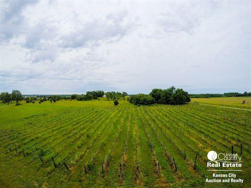 Vineyard Acreage For Sale : Centerview : Johnson County : Missouri